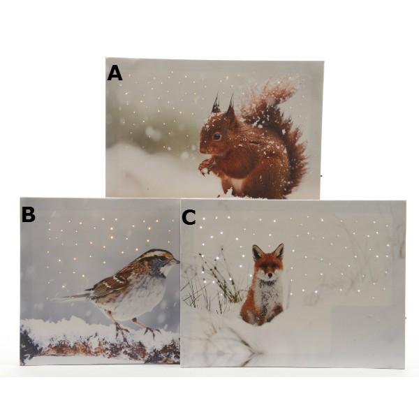 Lumineo LED Winter Animals Canvas 30 x 40 cm Choice of Three Designs
