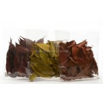 Lumineo Natural  Decorations Dried Leaves Available in Three Colours